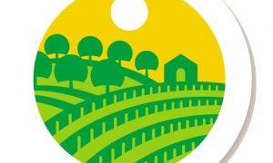 Szőlő, gyümölcs és kertészet